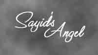 Sayid's Angel