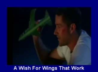 A Wish for Wings that Work
